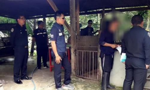 ปฏิบัติการปราบปรามการประกอบกิจการฆ่าสัตว์โดยผิดกฎหมาย