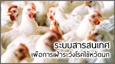 ระบบสารสนเทศเพื่อการเฝ้าระวังโรคไข้หวัดนก